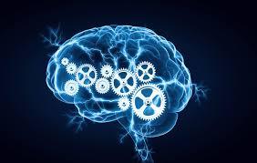 Premium Brain Booster+ - Effecten - waar te koop- instructie