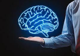 Premium Brain Booster+ - radar - Ervaringen - kruidvat