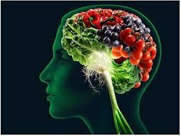 Premium Brain Booster+ - fabricant - Contra-indicaties - Nederland