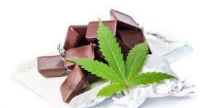 Choco fit - waar te koop - kruidvat - apotheek